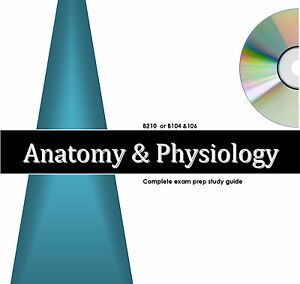 anatomy physiology 1 2 exams study guide audio review excelsior rh ebay com