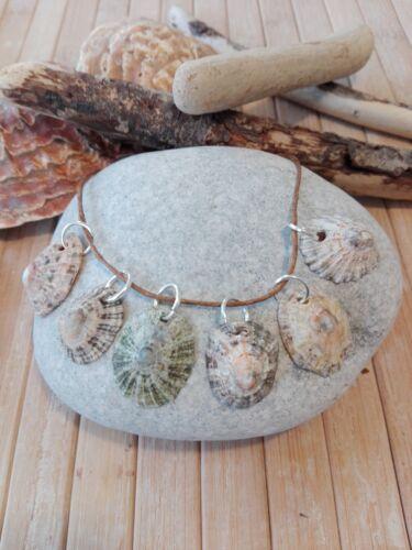6 Natural sea shell charms pendants Beach nautical coastal Boho jewellery craft