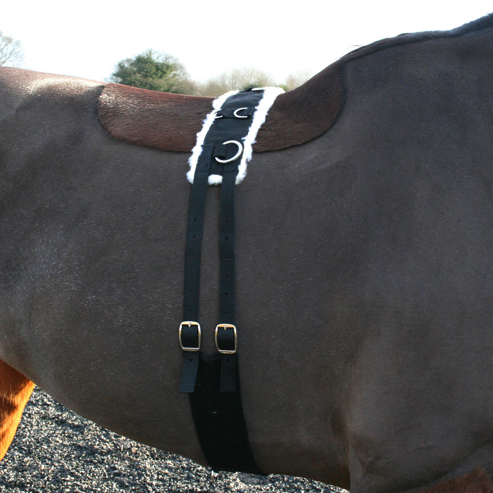 Nylon Fleece Lined Adjustable Lunging Lunge Roller + Cavesson + Padded Rein Line