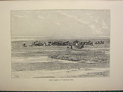 Art Prints Special Section C1890 Antique Print ~ View At Walvisch Bay