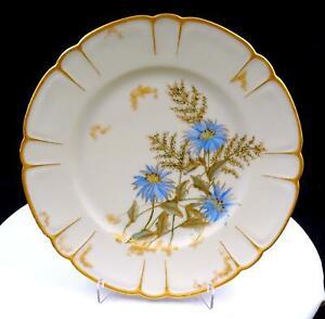 H-amp-Co-Haviland-Limoges-Francia-Esmalte-Azul-Floral-24-1cm-Plato-1876-1889