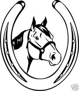 Custom Quarter Horse Ranch Equestrian Trailer Decal 18/""