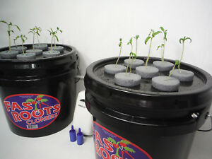 14 Site Indoor Plant Growing Aeroponics Cloner - Complete Cutting Rooting System