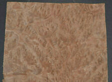 Eucalyptus Burl Raw Wood Veneer Sheet 7 X 95 Inches 142nd 7655 45