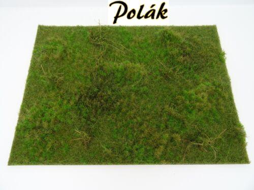 Polak 9818 H terrain Tapis dekomatte patrimoine forestier 27x20cm à la main