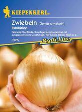 Kiepenkerl - Zwiebeln * Exhibition * 3125 Gemüsezwiebel mit Rekordgröße