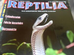 Reptilia Nº 70 Avril/mai 2008-mambas-afficher Le Titre D'origine Jwtmfnr3-10115449-397706585