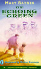 The Echoing Green by Mary Rayner (Paperback, 1994)