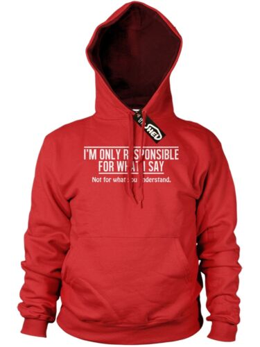 Im only Responsible for what i say Funny Men Rude Hoodie Novelty Offensive Hoody