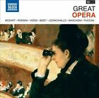 Great Opera (CD, Mar-2012, 10 Discs, Naxos (Distributor))