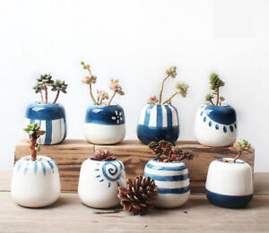 Image Is Loading Ceramic Chinese Flower Pot Succulent Plant Cactus