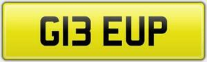 GEE-UP-EQUINE-HORSEBOX-PRIVATE-REG-NUMBER-PLATE-G13-EUP-FEES-PAID-GG-HORSE-HOR