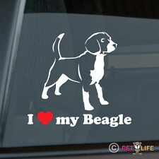 I Love My Beagle Sticker Die Cut Vinyl - beagles