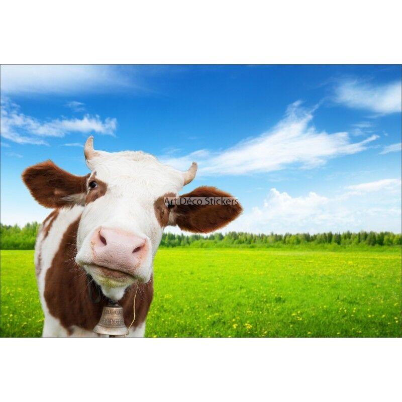 Stickers muraux muraux muraux géant déco : Tête de vache 1589 a24c6e