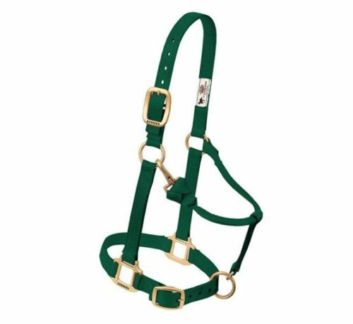 Small Horse Adjustable Chin and Throat Snap Halter by Weaver