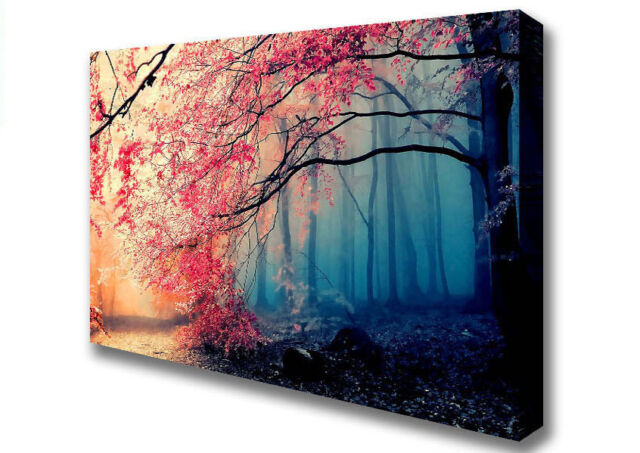 Jungle Forest In Japan Forest Canvas Print Wall Art A2 Size 05285