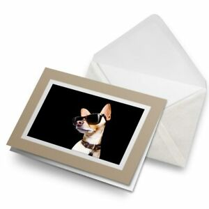 Greetings-Card-Biege-Funny-Dog-with-Sunglasses-3973