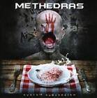 System Subversion von Methedras (2014)