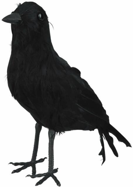 Schwarzer Rabe mit Federn als Halloween Deko