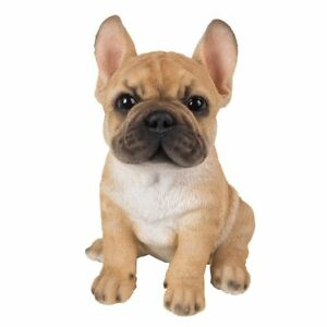 Vivid Arts Pet Pals Golden French Bulldog Puppy 5055195032317 Ebay