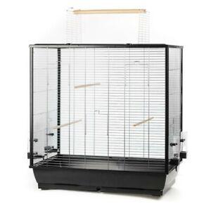 Grand Oiseau Cage Perroquet Canaris Großsittich Avec Freisitz-afficher Le Titre D'origine