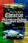 What in the World Is Christian Stewardship by Mallery Callahan (Paperback / softback, 1998)