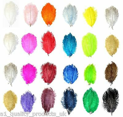 "10 x Ostrich Feathers, 10""-12"" Filler Spadones for Economical Displays Medium"