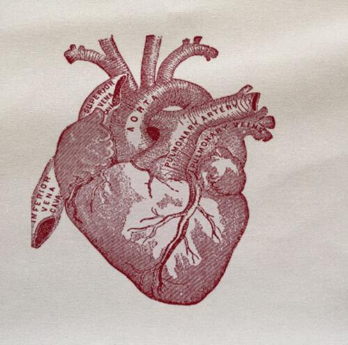 Anatomical Heart-Imprimé Tissu Panneau faire un coussin d/'ameublement Artisanat