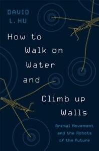 A Long Walk To Water Ebook