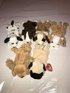 Lot Of 6 Vintage TY BEANIE BABY Dogs