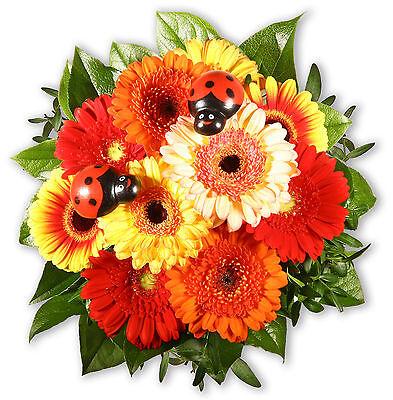 """Blumenstrauß Blumenversand """"gerbera Und Co"""" grußkarte+wunschtermin+frischhalter Blumensträuße Garten & Terrasse"""