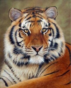 5D-DIY-Diamond-Painting-Part-Drill-Tiger-Embroidery-Cross-Stitch-Kit-Home-Decor