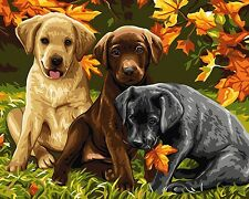 """16x20"""" DIY Paint By Number Kit Acrylic Oil Painting On Canvas Dogs 352"""