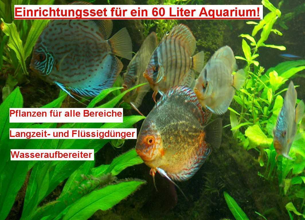 AQUARIUM SET FÜR 400 LITER AQUARIUM,  WASSERPFLANZEN, Aquariumpflanzen