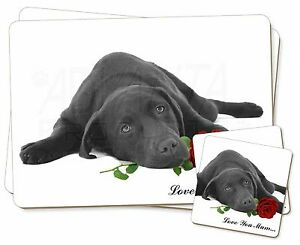 Labrador-Con-Rosa-039-Love-You-Mum-039-Individual-2x-Manteles-2x-Posavasos-S