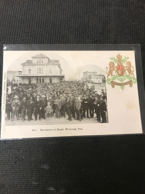 real photo Postcard Harvester At Depot Winnipeg Manitoba Portrait 1909   A1
