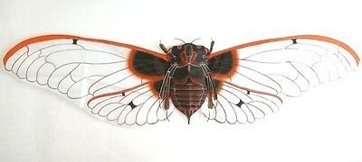 """Exquisite 62"""" Giant Snowy Chinese Cicada Kite Art Deco Gift Ideas"""