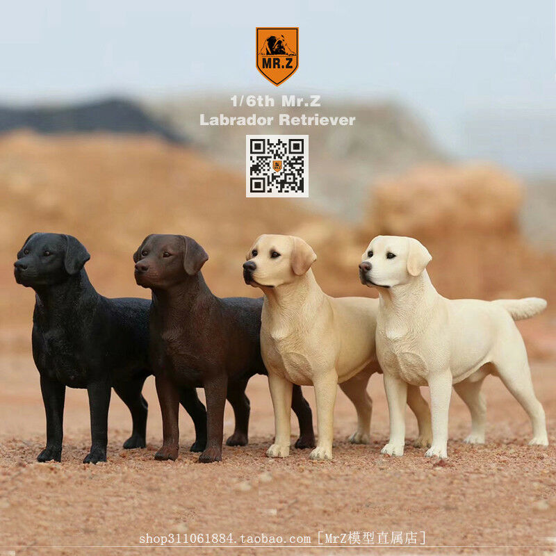 Mr.Z Labrador Dog Models with 1 6 6 6 95e4b3