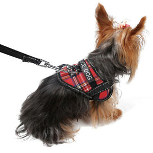 Dog Harness Small Girl Dog Collar W Service Dog Patches For Yorkie