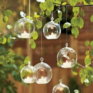 Transparent Clear Hanging Glass Stunning Modern Style For Plants And Flower Vase