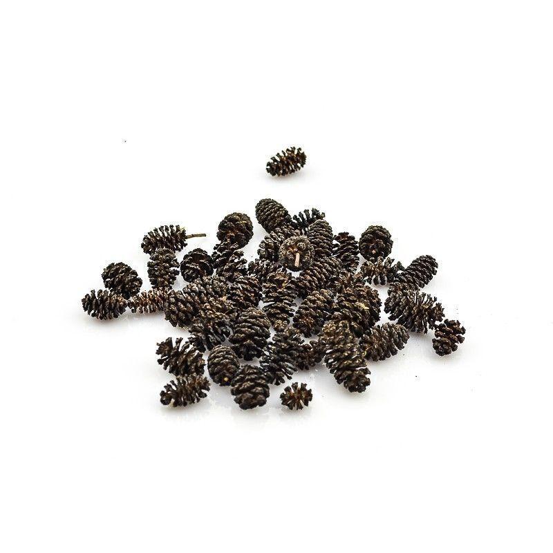 Blackerlenzapfen - 1 kg - KOSTENLOSER VERSAND Garnelen L-welse