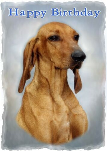 Segugio Italiano Dog Design A6 Textured Birthday Card BDSEGUGIO-1 by paws2print
