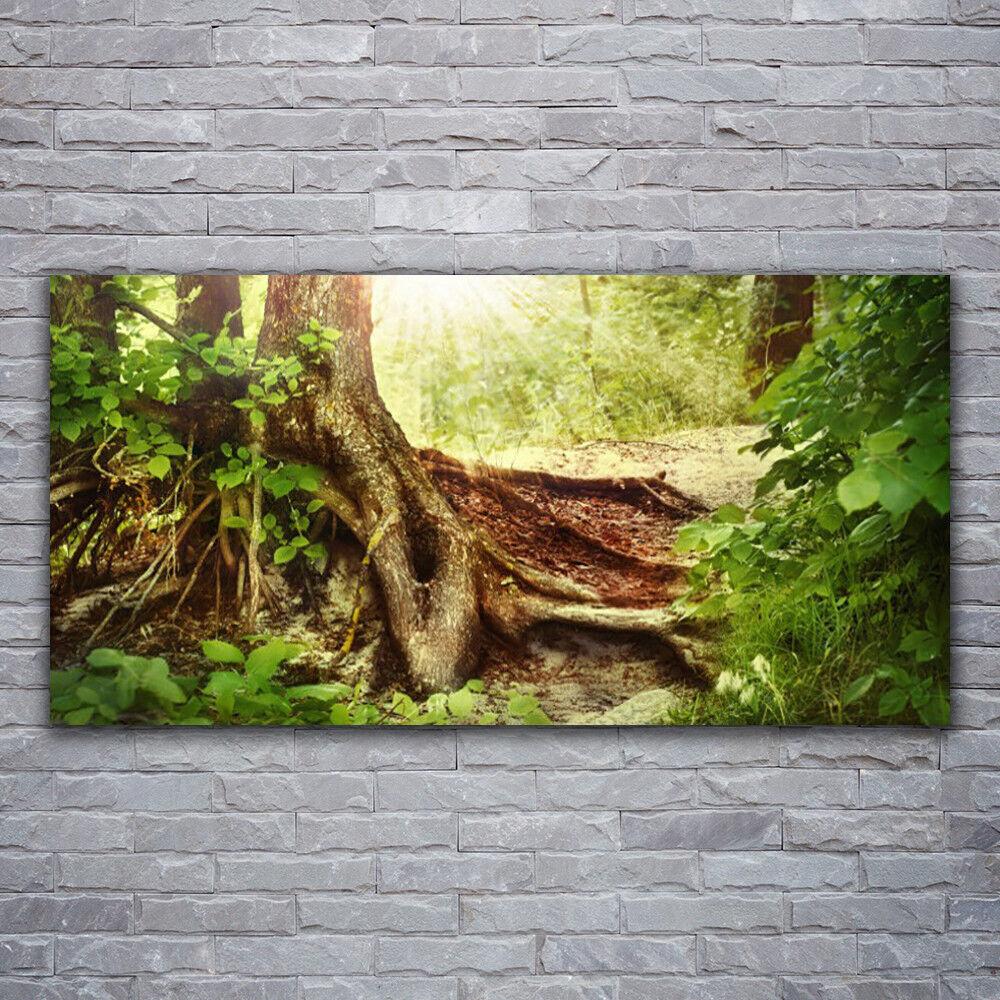 Glasbilder Wandbild Druck auf Glas 120x60 Baumstamm Natur
