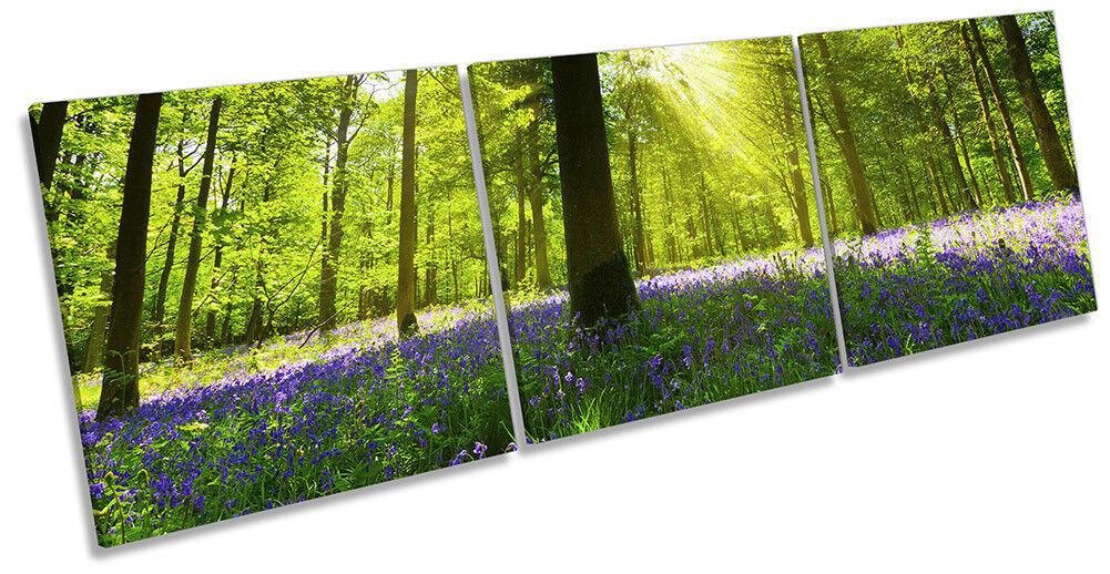 Foresta verde Raggi Solari ART. a Muro Immagine Stampa Triplo