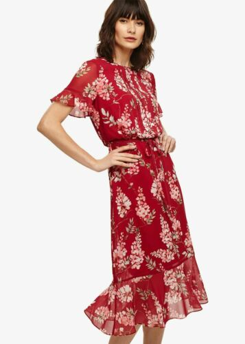 Phase Eight Helia Floral Short Sleeve Dress Bright Lipstick Size UK18 RRP130