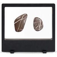 Magic Frames 200 Display Frame 8 X 7 Floating Rock Mineral Fossil Geode Agates