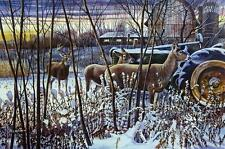 "Chris Kuehn ""Winter Santuary"" Deer Tractor Farm Art Print- Signed 24"" x 16"""
