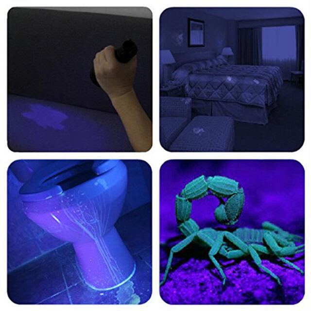 UV Blacklight Flashlight Pets UltraViolet Urine Detector Dogs Cats-Stain-Re C0F4