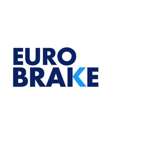 Fits VW Transporter MK6 2.0 TDI EuroBrake Rear Vented Brake Disc /& Pad Kit Set