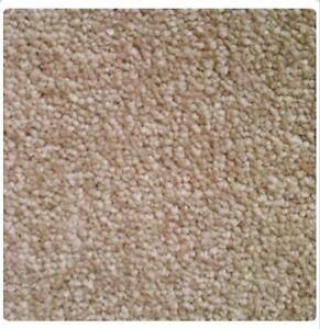 Image Is Loading Bathroom Carpet Flooring Beige Barbados Carousel Range All